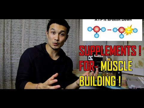 SUPPLEMENTS YOU NEED// MUSCLE BUILDING// BCAA// CREATINE [HINDI]
