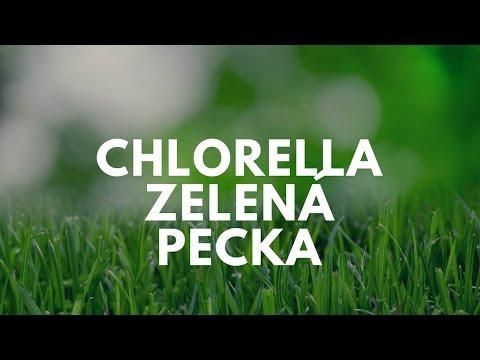 Chlorella Pyrenoidosa a Chlorella Vulgaris