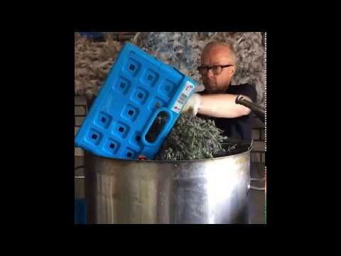 lavendel destilleren in de destilleerwerkplaats
