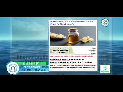 NATURAL MEDICINE FOR PAINS | BOSWELLIA SERRATA | ALPHA NATURAL | INDIAN HERB
