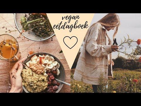vegan eetdagboek + winactie