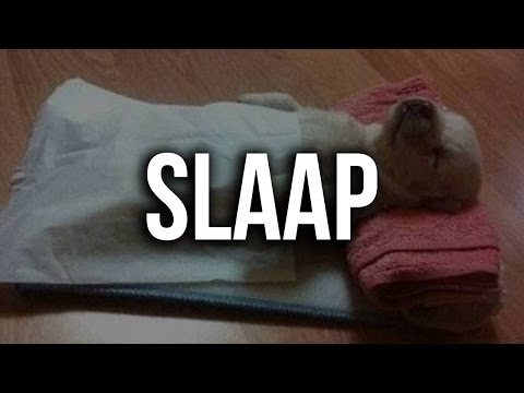 Slaap Tips & Weetjes