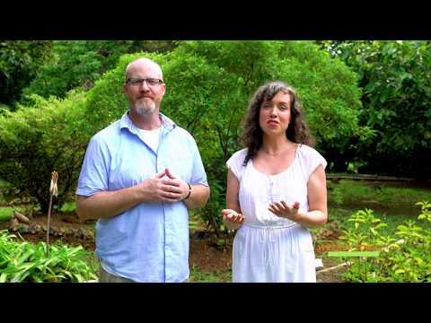 Ashwaghanda Benefits | LifeSeasons Weekly Tonic Episode 54