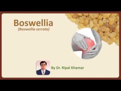 Boswellia – Wonder Herbal drug for inflammation and joint pains