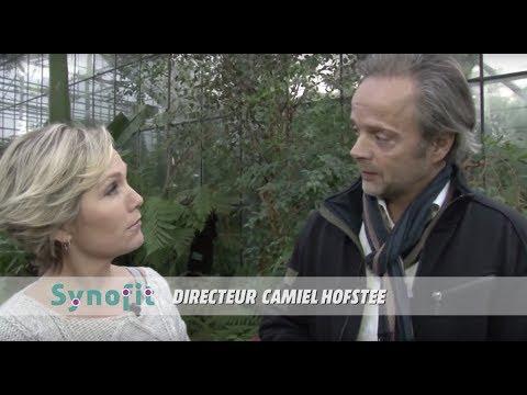 Entstehung von Synofit: Interview mit Camiel Hofstee und René den Admirant