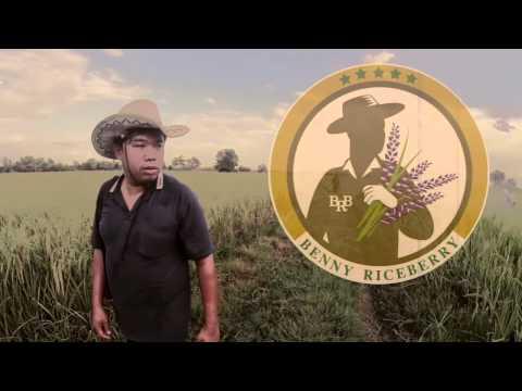Benny Riceberry (organic Rice)