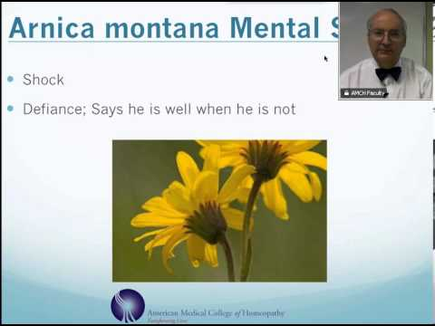 Arnica Montana: Homeopathic Medicine -Tips For Beginners