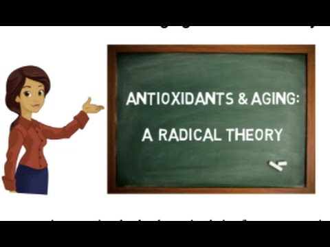 Antioxidants and aging: A radical theory