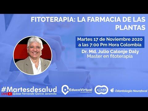 Fitoterapia: La farmacia de las plantas // Martes de Salud