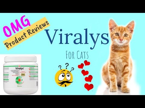Viralys For Cats Oral Powder (L-Lysine Supplement) 🌳 Product Review