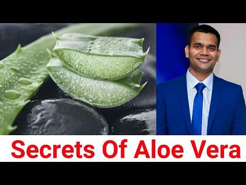 Aloe Vera Juice – Benefits, How Use, Secrets Of Its Function