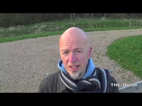 Over onze website THC-Olie.nl