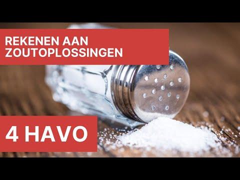 4 havo – Rekenen aan zoutoplossingen