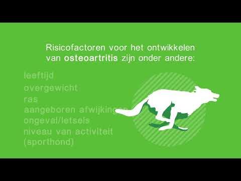Flexadin voor de gewrichten van uw huisdier