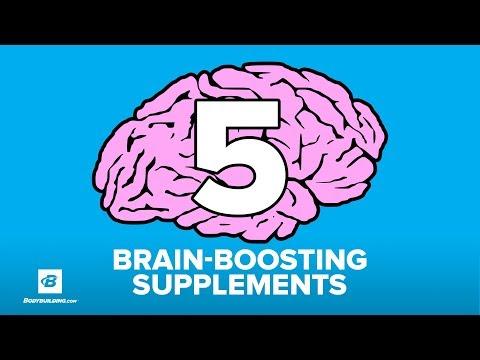 5 Brain-Boosting Nootropic Supplements | Doug Kalman Ph.D.