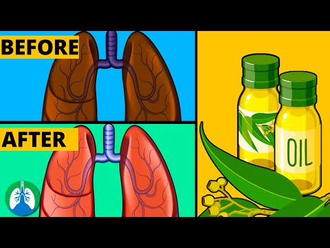 How to Cleanse Your Lungs with Eucalyptus Oil   Respiratory Therapy Zone