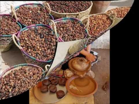 Argan oil production agadir, information and background