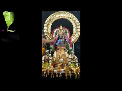 Thadicombu perumal aadi thiruvila royal green leaf தாடிக்கொம்பு பெருமாள் ஆடித் திருவிழா சூரிய பிரபை