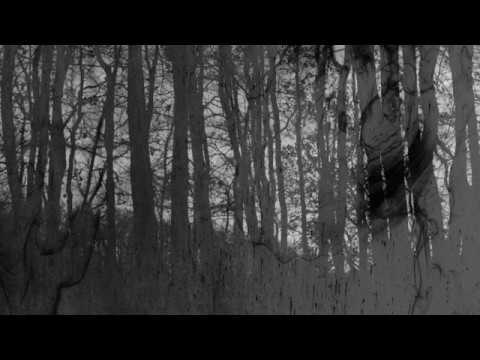 notnotice – 5-htp