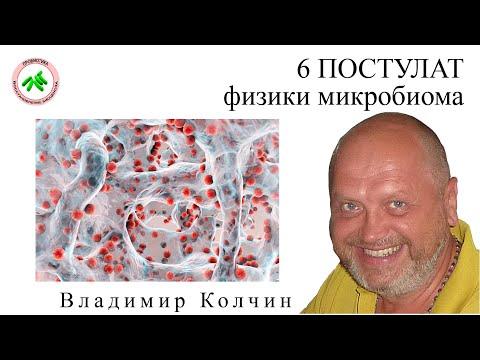 6 ПОСТУЛАТ МИКРОБИОМА  #probiotica.ru