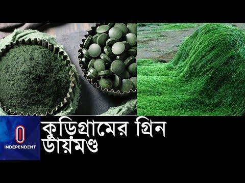 ৩০ হাজার টাকা বিনিয়োগে ২ থেকে ৩ লাখ টাকা আয়    #Kurigram Spirulina