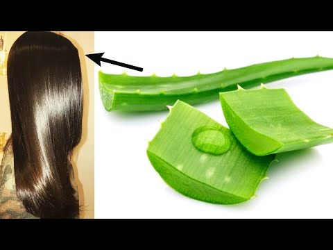 Use only aloe vera leaf on your hair and see the magic /get silky,shiny,smooth and thick hair