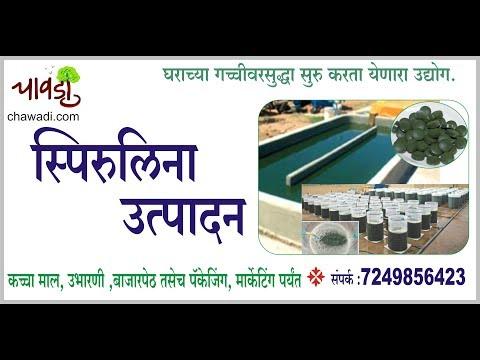 Spirulina Cultivation Business   स्पिरुलीना निर्मिती उद्योग मराठीमध्ये