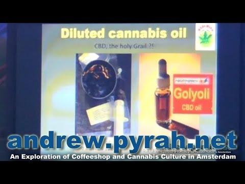 Wernard Bruining Positronics CBD Oil & Coffeeshop History Seminar PART 2 Cannabis Cup 2013 Amsterdam