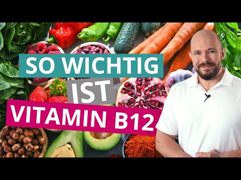 Vitamin B12 – So wichtig ist es wirklich 🥕
