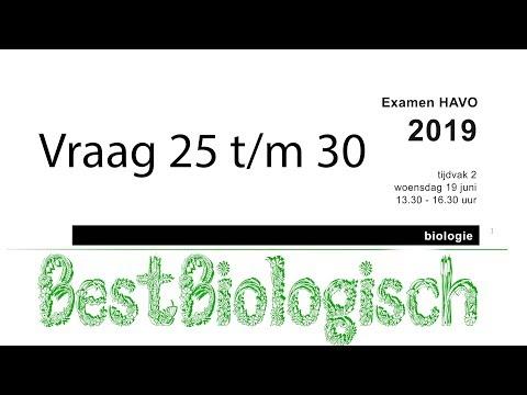 Biologie examen Havo 2019 tweede tijdvak vraag 25 t/m 30