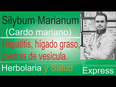 Herbolaria: Cardo mariano, propiedades curativas