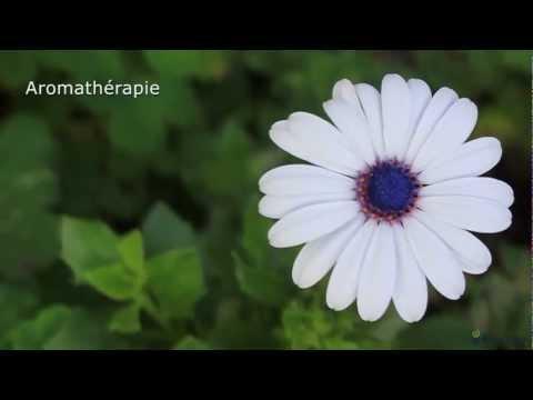 BainUltra | AROMATHÉRAPIE