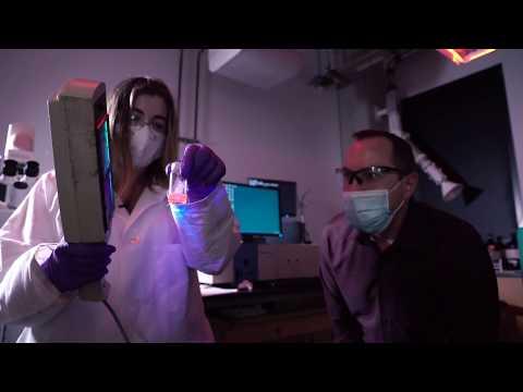 Boron nitride nanotubes show promise for composites, biomedical applications
