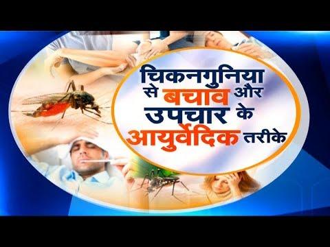 Sanjeevani : Chikungunya (चिकनगुनिया) से बचाव और उपचार के Ayurvedic तरीके