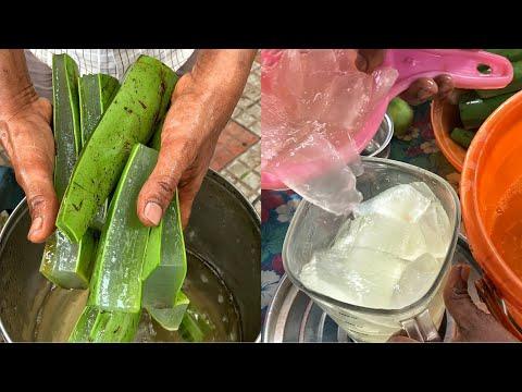 Unique Aloe Vera Drink of Chennai😱😱 ऐसा shake कभी नहीं देखा होगा😳😳   #ChennaiFood #StreetFood