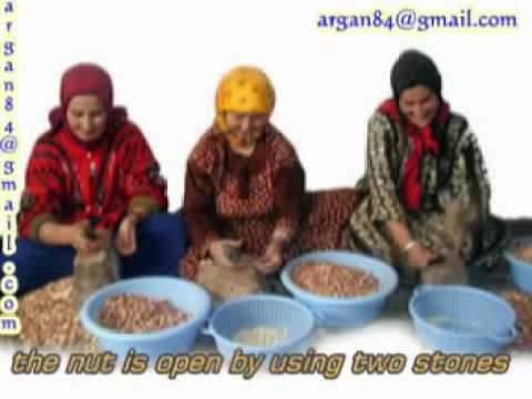 Steps of Argan Oil – huile d'argan Argan Oil Morocco